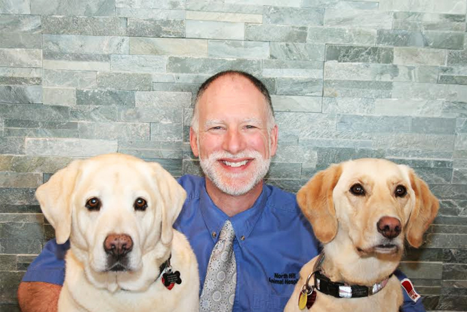 5 Questions to Ask your Vet by Dr  Kerr - North Hill Animal Hospital