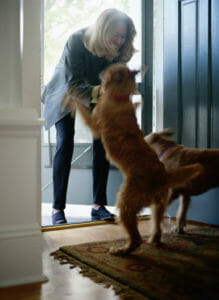 Dogs greeting owner at the door